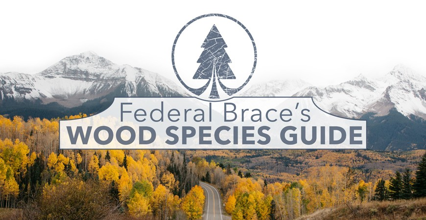 Federal Brace's Wood Species Guide